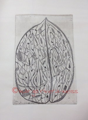 walnut (etching)